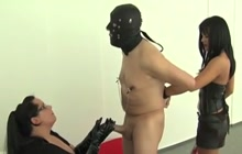 Training a submissive slave